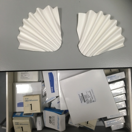 Concertina filter papers on a lab bench